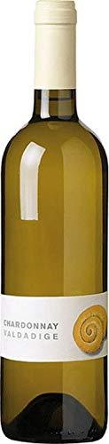 Chardonnay Valdadige - 2019-6 x 0,75 lt. - Cantina Valdadige