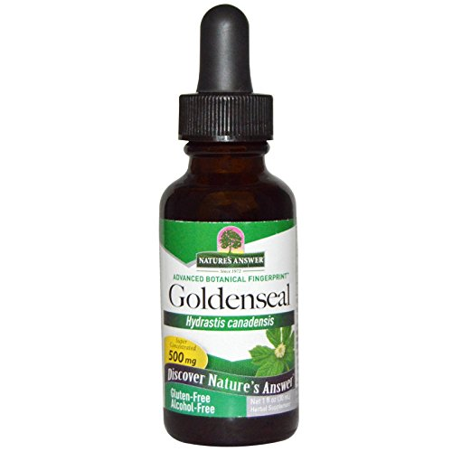 Nature's Answer | Gelbwurzel (Goldenseal) | Alkoholfrei | 500 mg | 1 fl oz (30 ml) | vegan |...