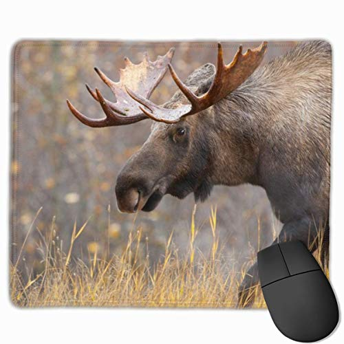 Gaming Mouse Pad, personalisierte benutzerdefinierte Maus Padnon-Slip Gummi Gaming Mouse Pad,...
