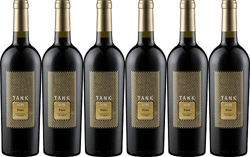 6x Tank Syrah Appassimento 2018 - Weingut Camivini - Mario Minini, Puglia - Rotwein