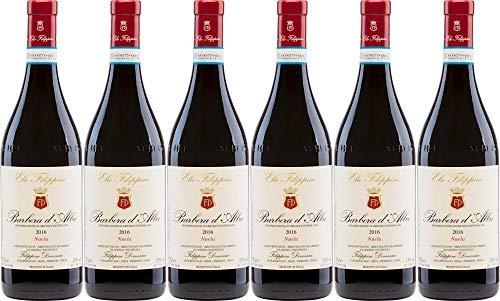 6x Barbera d' Alba Nuela Magnum in 1er-Holzkiste 2018 - Weingut Elio Filippino, Piemonte - Rotwein