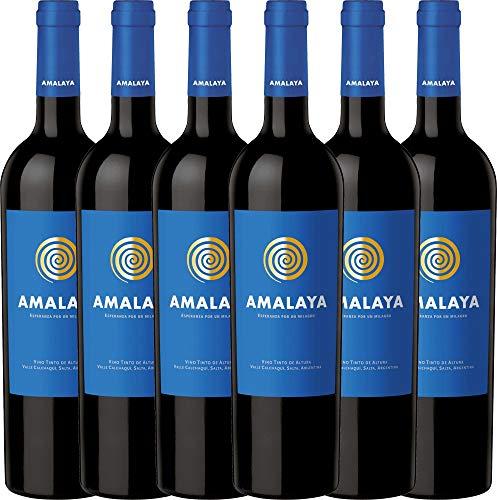 6er Weinpaket Rotwein - Amalaya Tinto 2018 - Bodega Colomé mit VINELLO.weinausgießer | trockener...